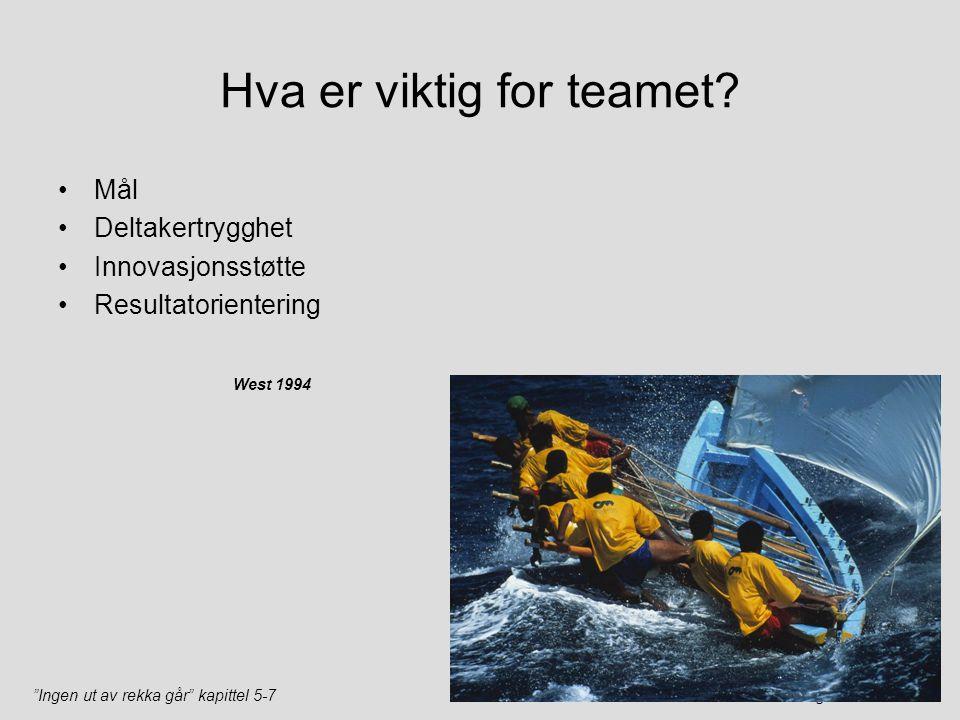 """""""Ingen ut av rekka går"""" kapittel 5-7Teamutvikling v/Harald Støre Hva er viktig for teamet? Mål Deltakertrygghet Innovasjonsstøtte Resultatorientering"""