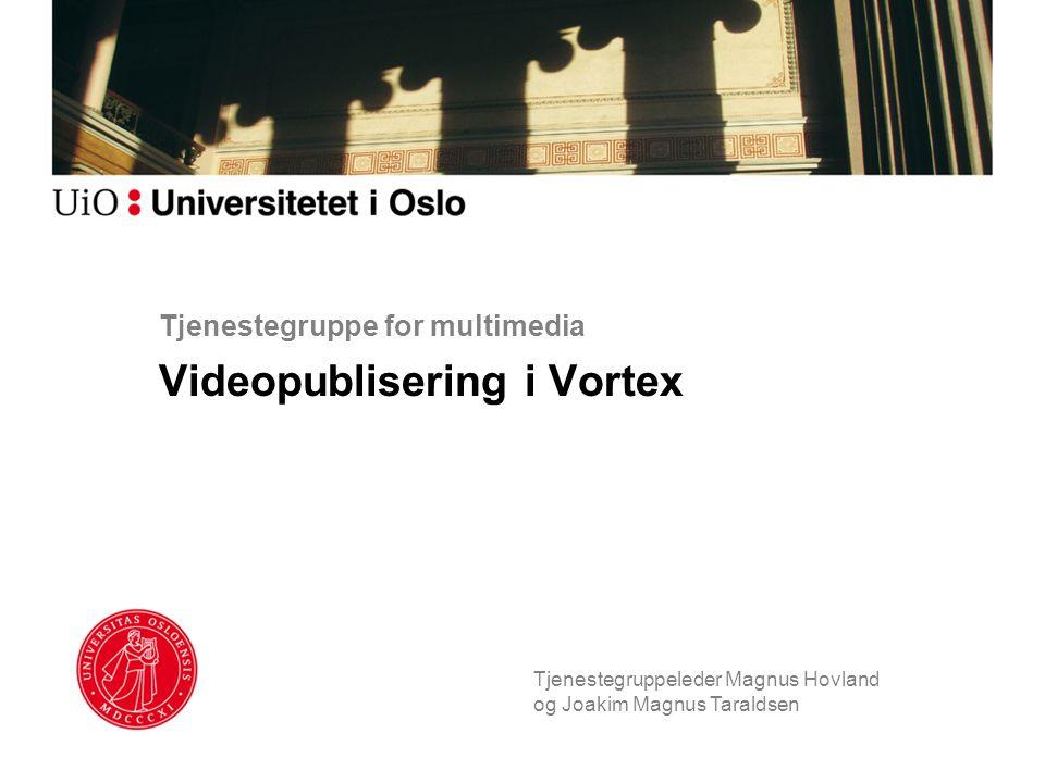 Tjenestegruppe for multimedia Videopublisering i Vortex Tjenestegruppeleder Magnus Hovland og Joakim Magnus Taraldsen