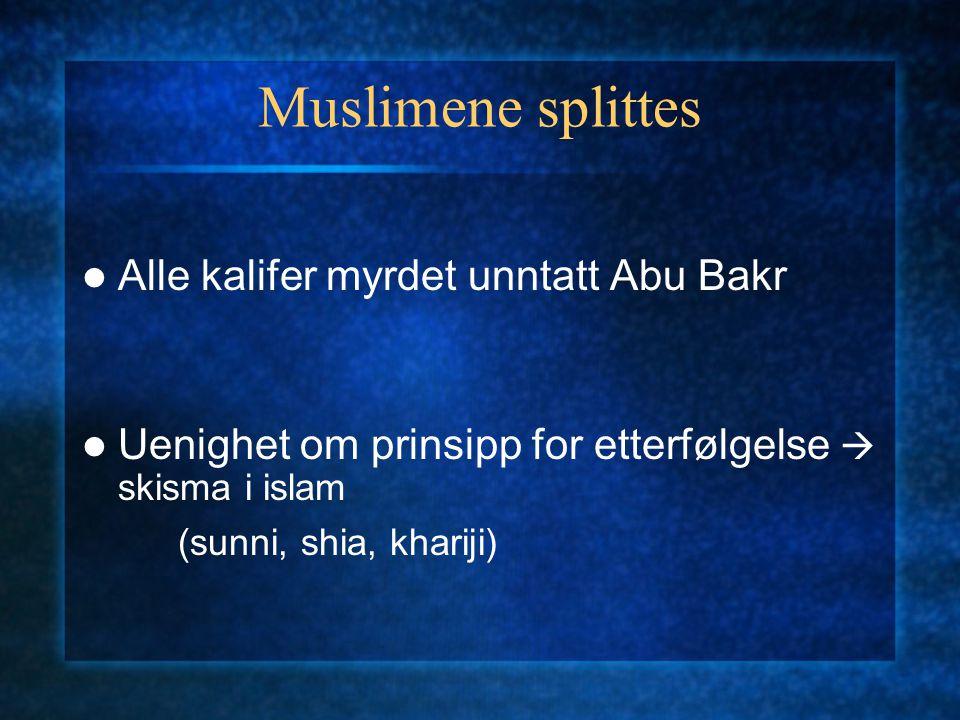 Muslimene splittes Alle kalifer myrdet unntatt Abu Bakr Uenighet om prinsipp for etterfølgelse  skisma i islam (sunni, shia, khariji)
