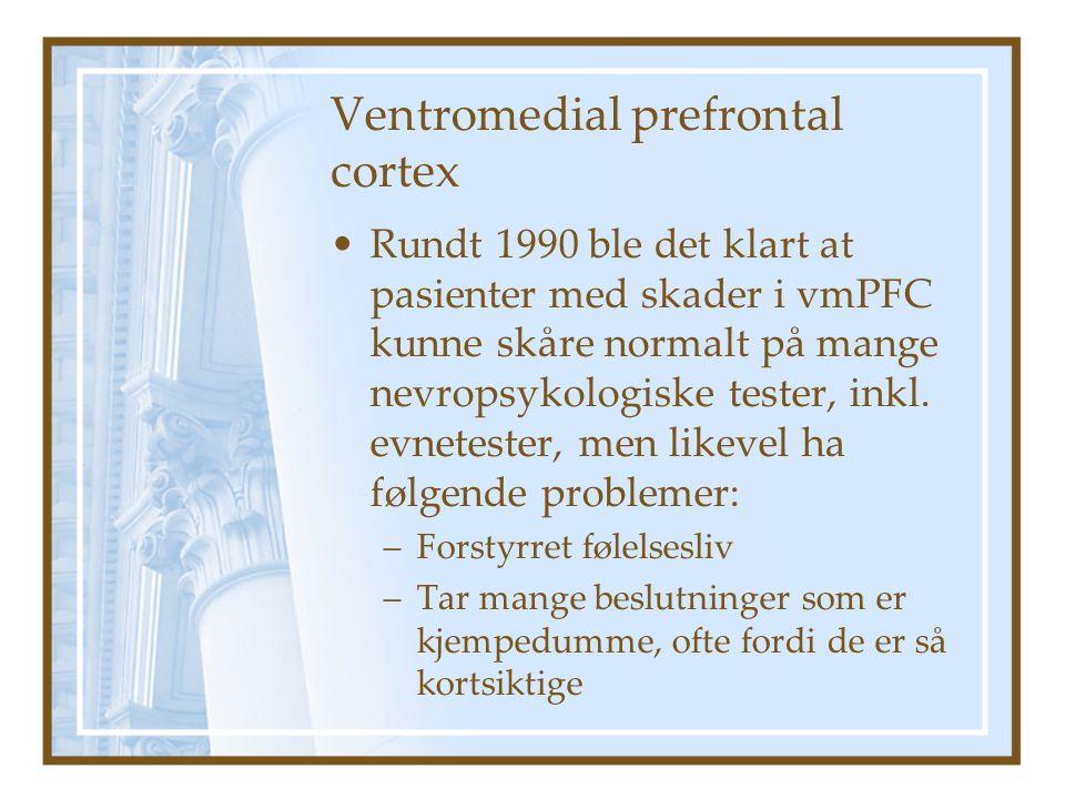 Ventromedial prefrontal cortex Rundt 1990 ble det klart at pasienter med skader i vmPFC kunne skåre normalt på mange nevropsykologiske tester, inkl.