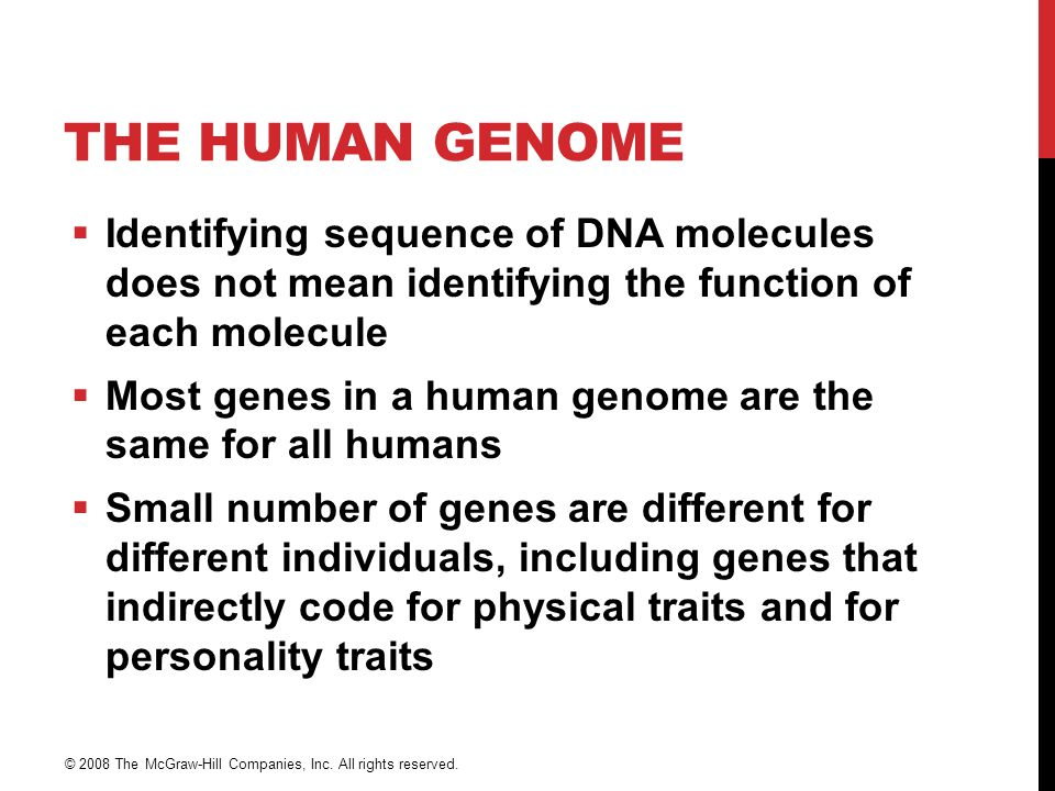 THE HUMAN GENOME  Identifying sequence of DNA molecules does not mean identifying the function of each molecule  Most genes in a human genome are th