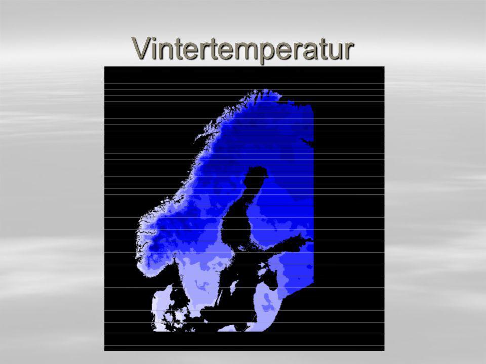 Vintertemperatur