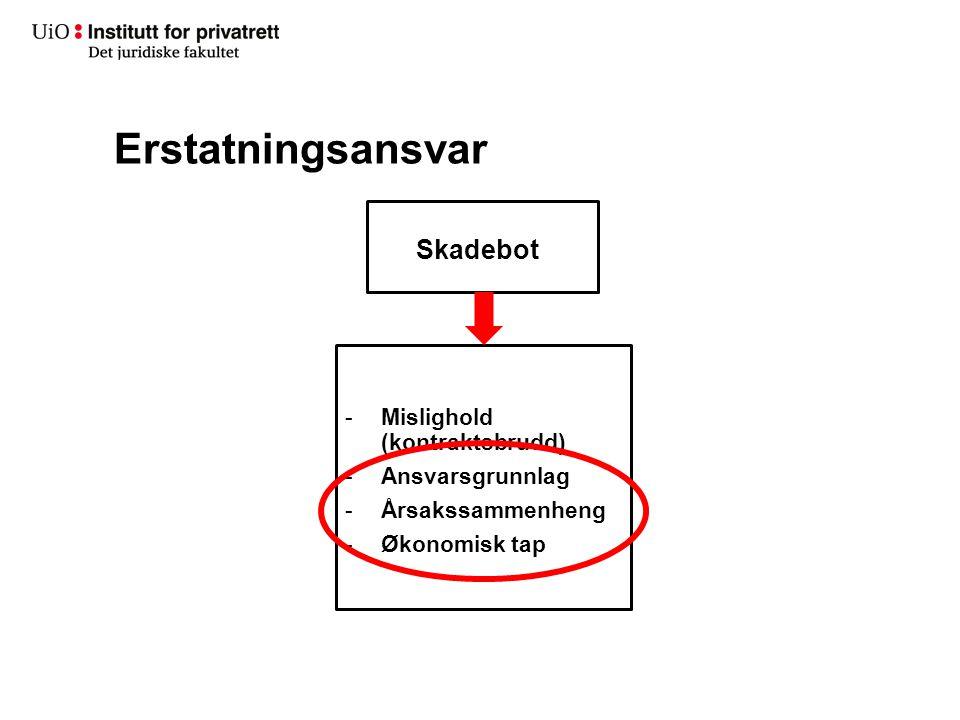 Erstatningsansvar Skadebot -Mislighold (kontraktsbrudd) -Ansvarsgrunnlag -Årsakssammenheng -Økonomisk tap