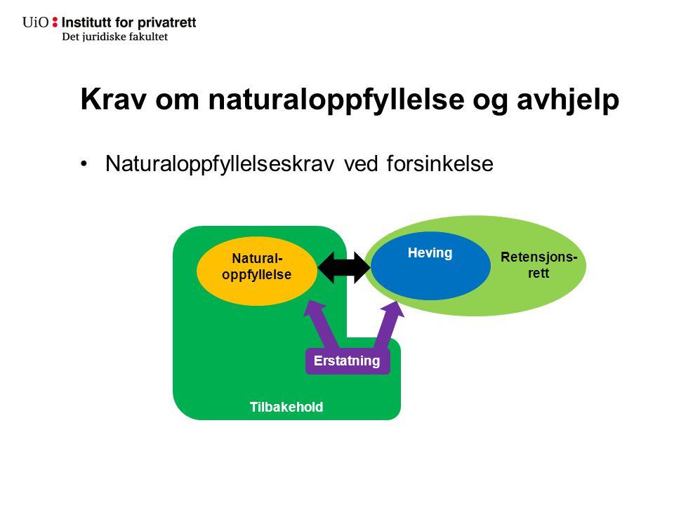 Retensjons- rett Tilbakehold Krav om naturaloppfyllelse og avhjelp Natural- oppfyllelse Heving Erstatning Naturaloppfyllelseskrav ved forsinkelse