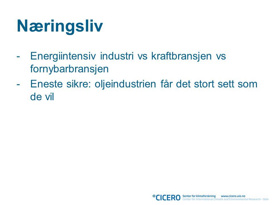 Næringsliv -Energiintensiv industri vs kraftbransjen vs fornybarbransjen -Eneste sikre: oljeindustrien får det stort sett som de vil