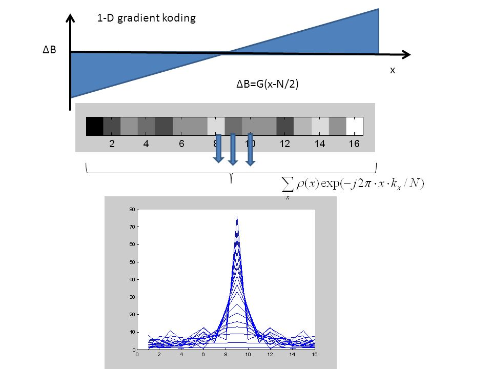 ∆B 1-D gradient koding ∆B=G(x-N/2) x