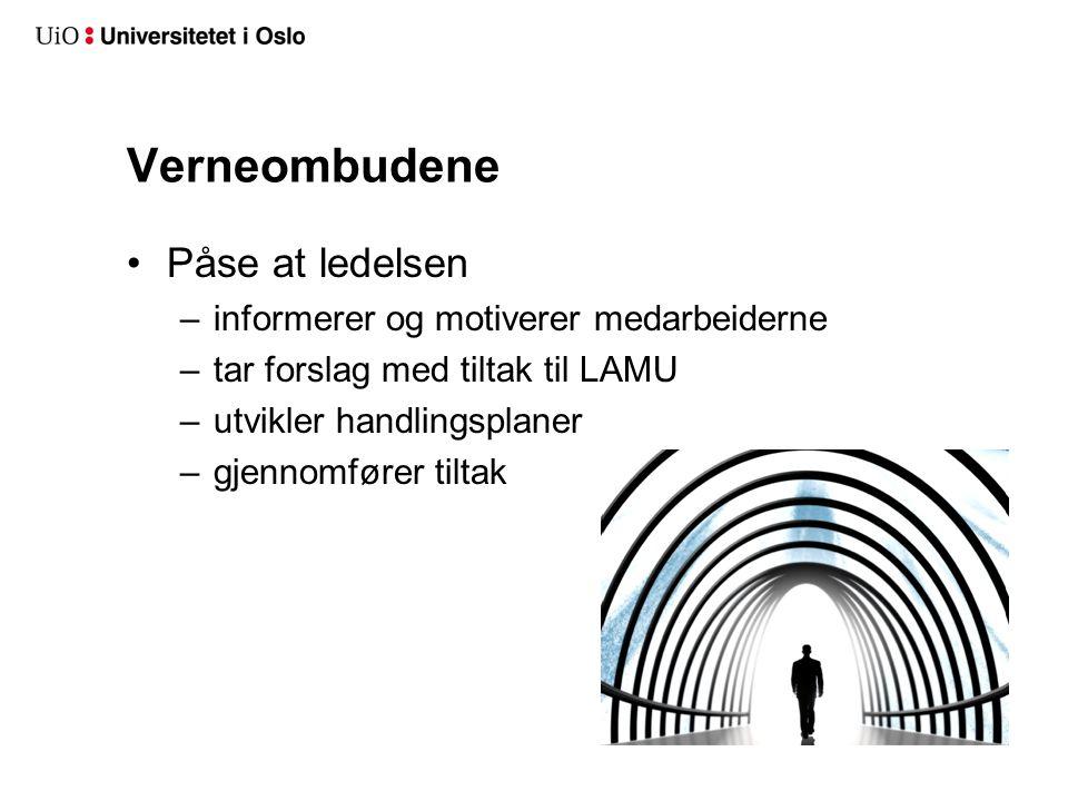 Verneombudene Påse at ledelsen –informerer og motiverer medarbeiderne –tar forslag med tiltak til LAMU –utvikler handlingsplaner –gjennomfører tiltak