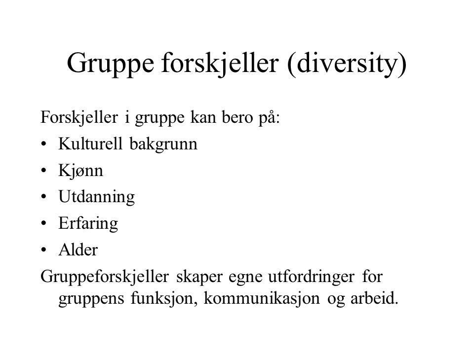 Gruppe forskjeller (diversity) Forskjeller i gruppe kan bero på: Kulturell bakgrunn Kjønn Utdanning Erfaring Alder Gruppeforskjeller skaper egne utfor