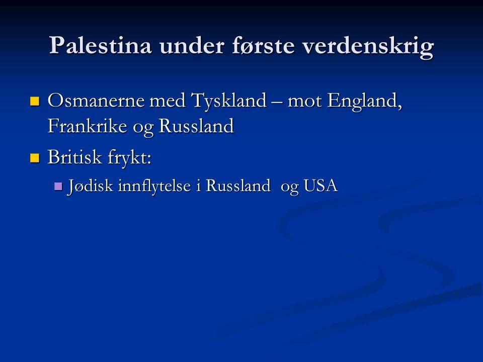 Palestina under første verdenskrig Osmanerne med Tyskland – mot England, Frankrike og Russland Osmanerne med Tyskland – mot England, Frankrike og Russ