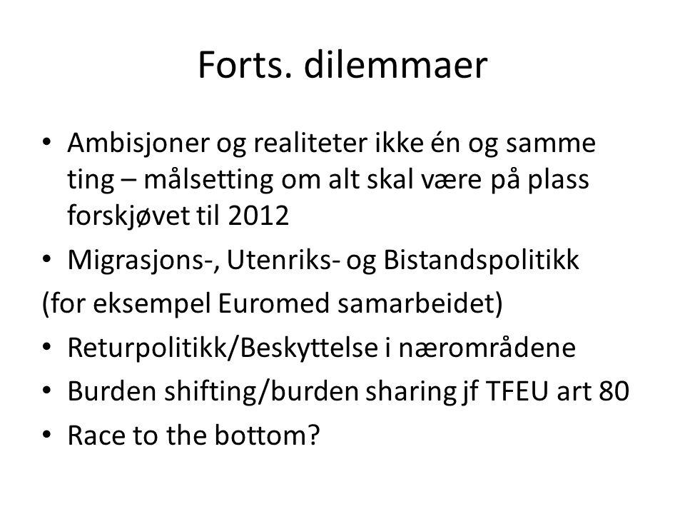 Norske ambisjoner/muligheter Formelle avtaler Uformelt samarbeid Stortingsmelding om norsk flyktning- og migrasjonspolitikk i et europeisk perspektiv,