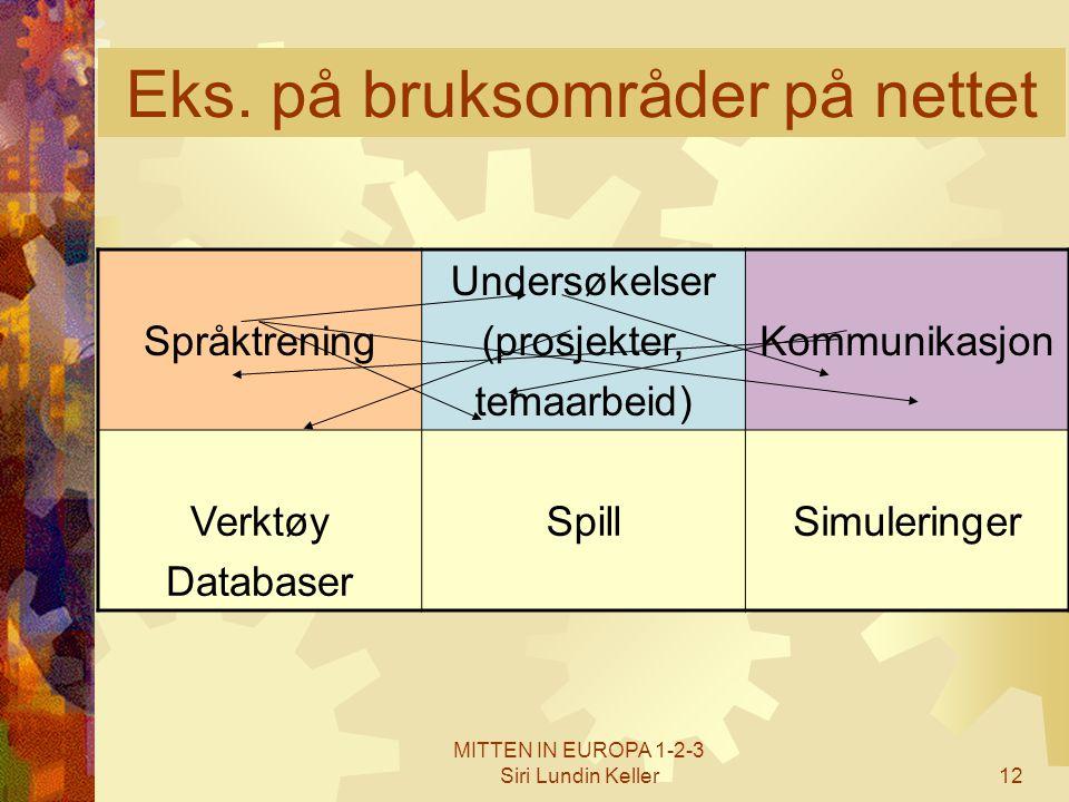 MITTEN IN EUROPA 1-2-3 Siri Lundin Keller12 Eks. på bruksområder på nettet Språktrening Undersøkelser (prosjekter, temaarbeid) Kommunikasjon Verktøy D