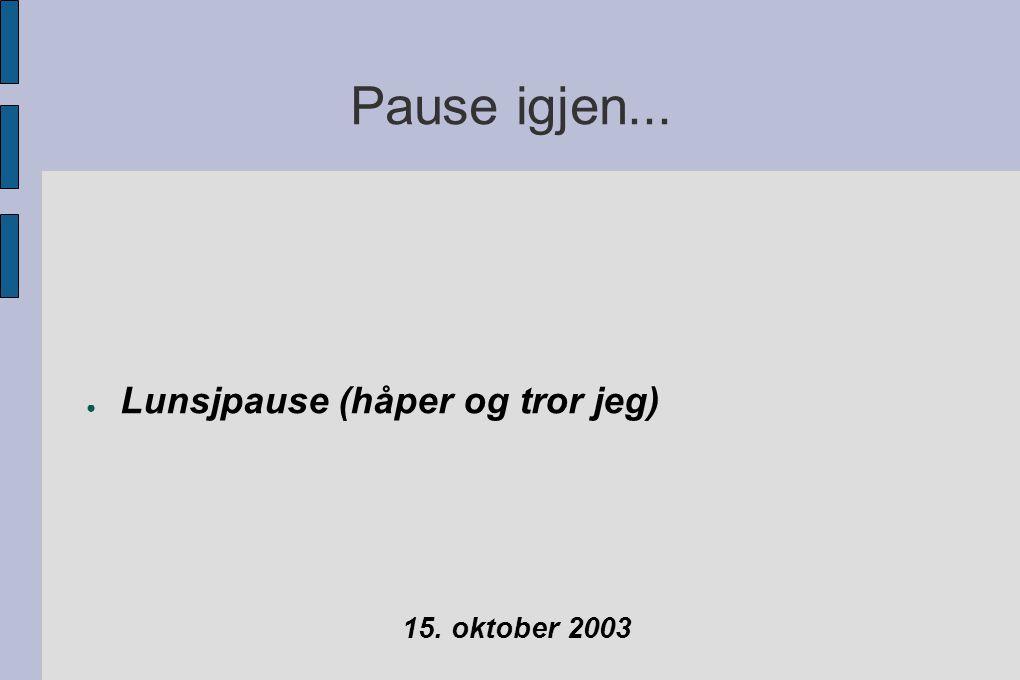 Pause igjen... ● Lunsjpause (håper og tror jeg) 15. oktober 2003