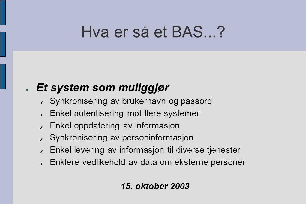 Hva er så et BAS....