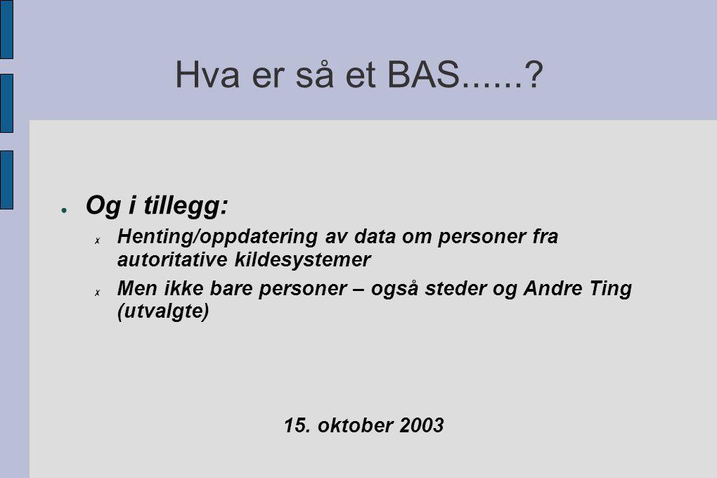Hva er så et BAS.......