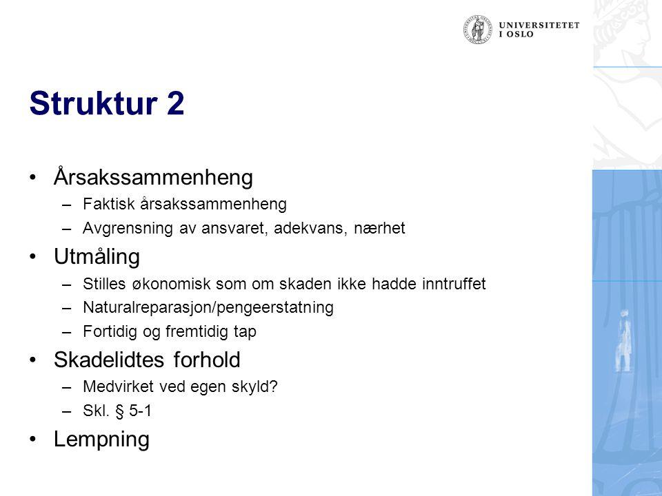 Struktur 2 Årsakssammenheng –Faktisk årsakssammenheng –Avgrensning av ansvaret, adekvans, nærhet Utmåling –Stilles økonomisk som om skaden ikke hadde