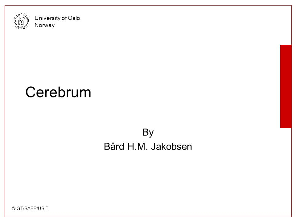 © GT/SAPP/USIT University of Oslo, Norway Cerebrum By Bård H.M. Jakobsen