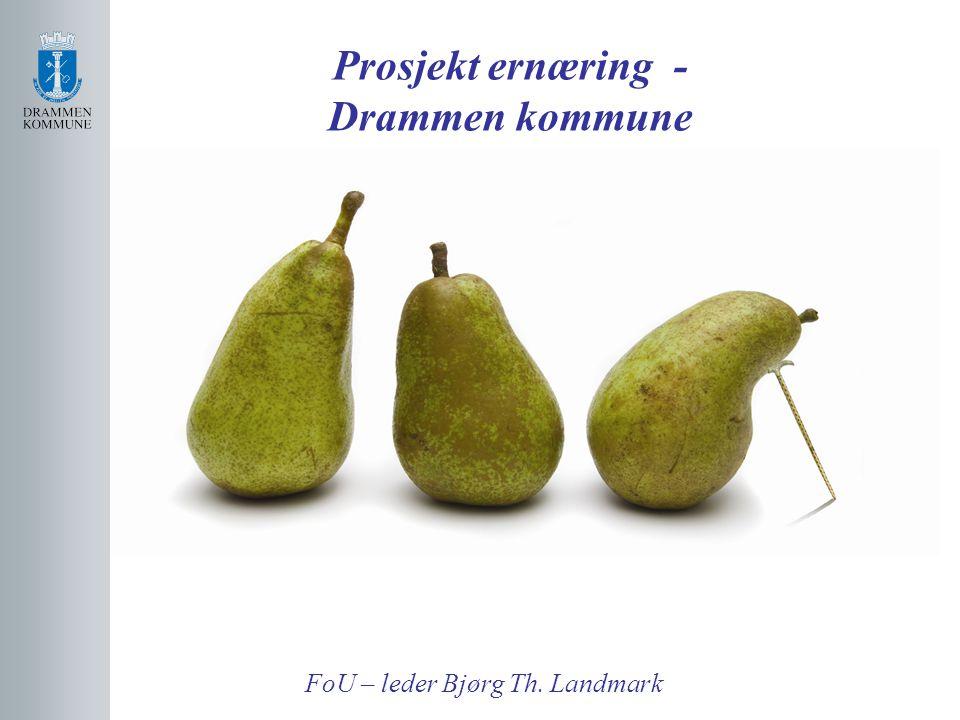 Prosjekt ernæring - Drammen kommune FoU – leder Bjørg Th. Landmark