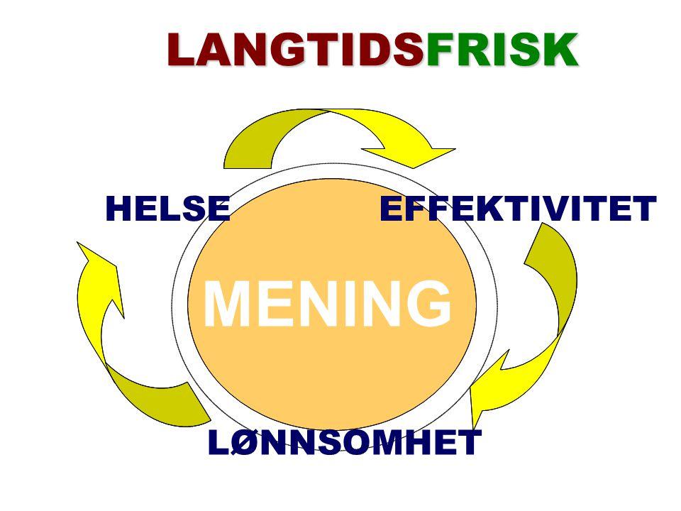 LÅNGTIDSFRISK MENING HELSEEFFEKTIVITET LØNNSOMHET LANGTIDSFRISK