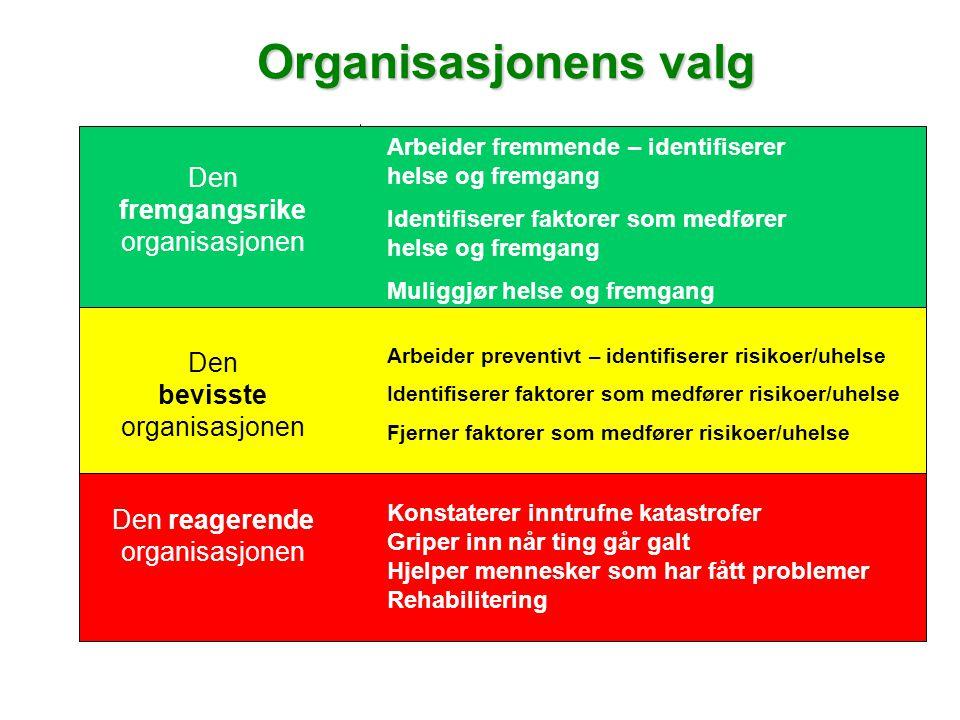 Organisasjonens valg Organisasjonens valg Den fremgangsrike organisasjonen Den bevisste organisasjonen Den reagerende organisasjonen Arbeider fremmende – identifiserer helse og fremgang Identifiserer faktorer som medfører helse og fremgang Muliggjør helse og fremgang Arbeider preventivt – identifiserer risikoer/uhelse Identifiserer faktorer som medfører risikoer/uhelse Fjerner faktorer som medfører risikoer/uhelse Konstaterer inntrufne katastrofer Griper inn når ting går galt Hjelper mennesker som har fått problemer Rehabilitering