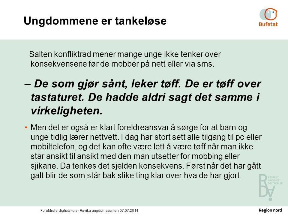 Foreldreferdighetskurs - Røvika ungdomssenter / 07.07.2014 Ungdommene er tankeløse Salten konfliktråd mener mange unge ikke tenker over konsekvensene
