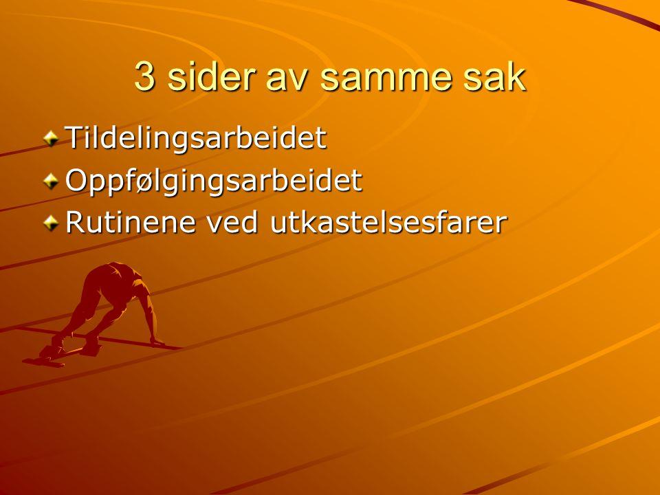 Bo oppfølgingstjenesten Økonomisk veiledning Hvordan bo i Norge.