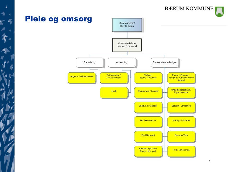 28 Beskrivelse av tjenestene lProgramområdet representerer et mangfold av tjenester og hele befolkningen i kommunen berøres av disse.