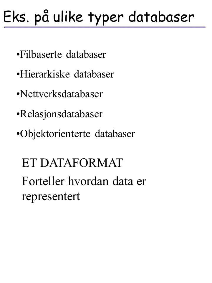 """Hva er en database """"Kort fortalt er dette en velorganisert samling av data, som man skal kunne bearbeide og søke i."""" De fysiske data er ikke leselig f"""