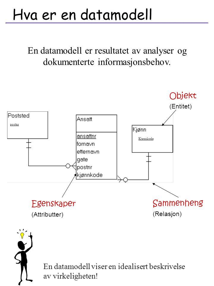 Filbaserte databaser Hierarkiske databaser Nettverksdatabaser Relasjonsdatabaser Objektorienterte databaser ET DATAFORMAT Forteller hvordan data er re