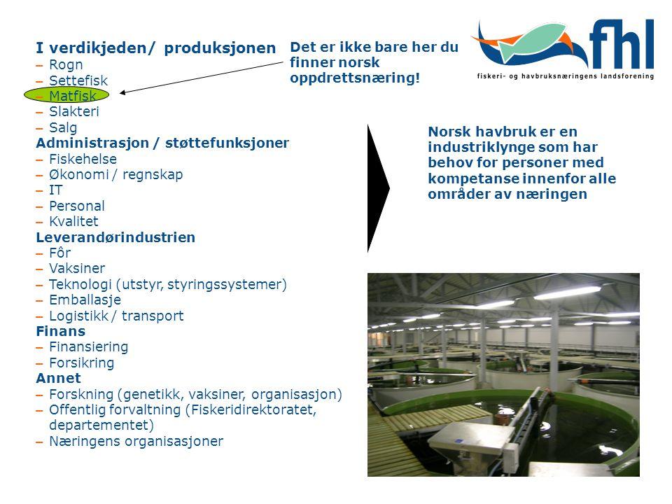 I verdikjeden/ produksjonen – Rogn – Settefisk – Matfisk – Slakteri – Salg Administrasjon / støttefunksjoner – Fiskehelse – Økonomi / regnskap – IT –
