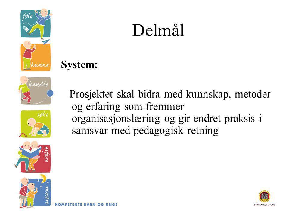 Delmål System: Prosjektet skal bidra med kunnskap, metoder og erfaring som fremmer organisasjonslæring og gir endret praksis i samsvar med pedagogisk retning