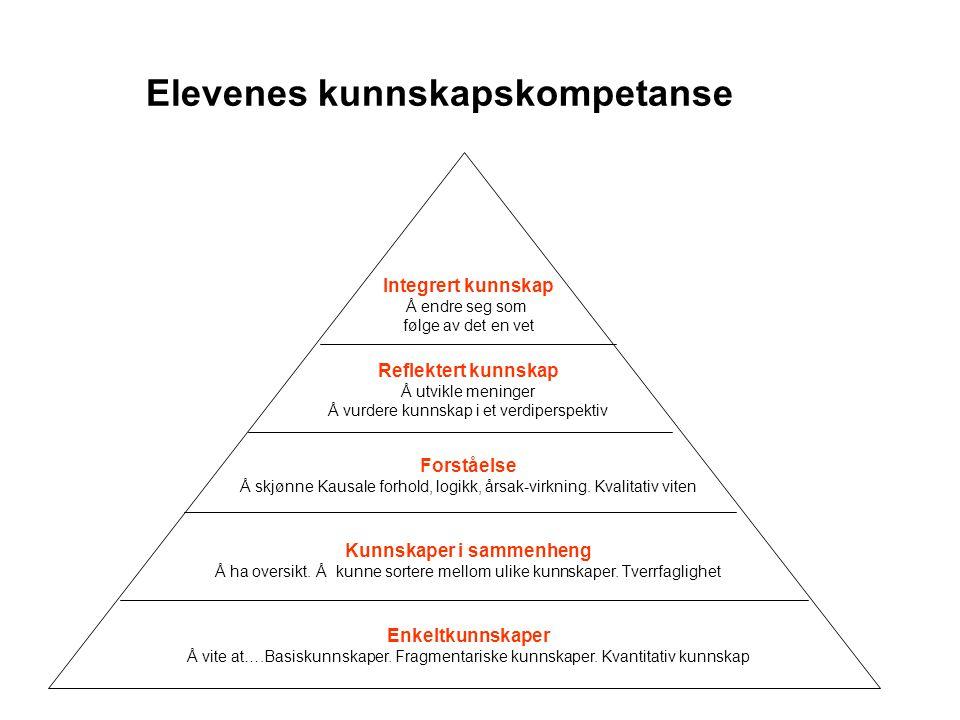 Elevenes kunnskapskompetanse Enkeltkunnskaper Å vite at….Basiskunnskaper. Fragmentariske kunnskaper. Kvantitativ kunnskap Reflektert kunnskap Å utvikl