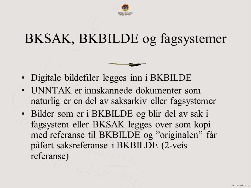 BKSAK, BKBILDE og fagsystemer Digitale bildefiler legges inn i BKBILDE UNNTAK er innskannede dokumenter som naturlig er en del av saksarkiv eller fags