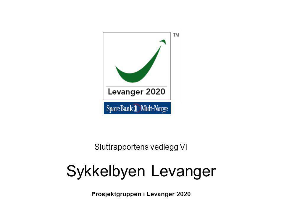 Sluttrapportens vedlegg VI Sykkelbyen Levanger Prosjektgruppen i Levanger 2020