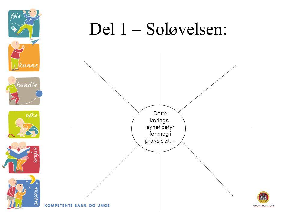 Del 1 – Soløvelsen: Dette lærings- synet betyr for meg i praksis at…