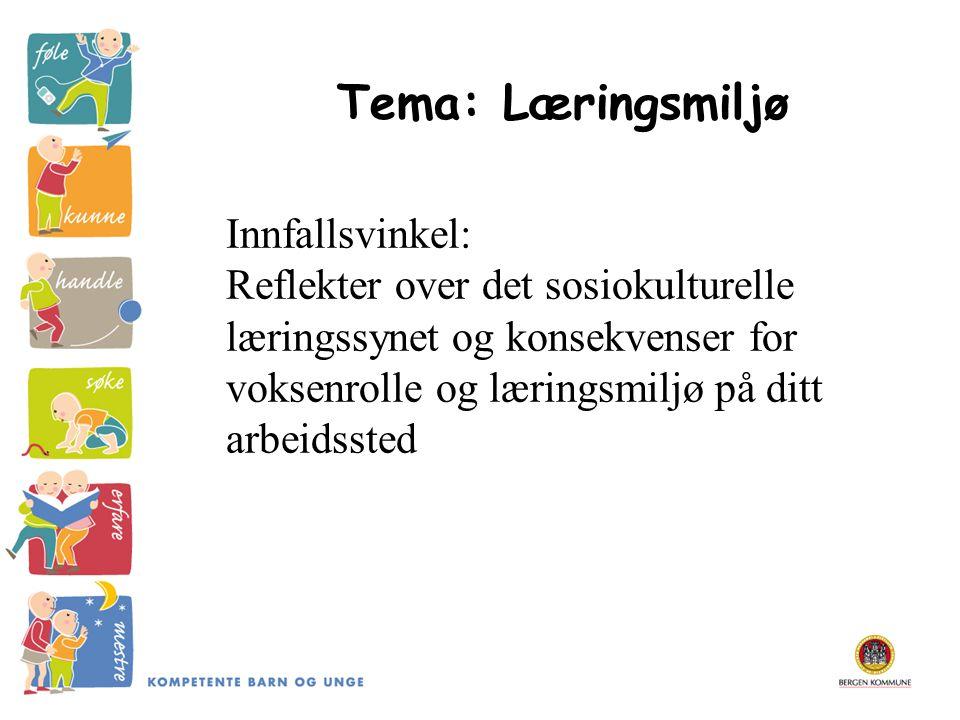 Tema: Læringsmiljø Innfallsvinkel: Reflekter over det sosiokulturelle læringssynet og konsekvenser for voksenrolle og læringsmiljø på ditt arbeidssted