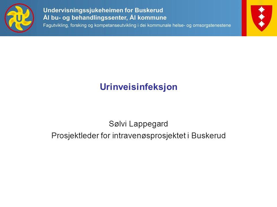 Urinveisinfeksjon Sølvi Lappegard Prosjektleder for intravenøsprosjektet i Buskerud