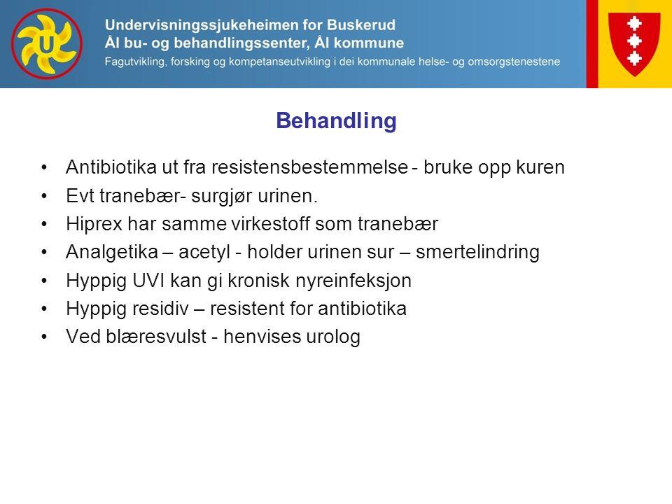 Antibiotika ut fra resistensbestemmelse - bruke opp kuren Evt tranebær- surgjør urinen.