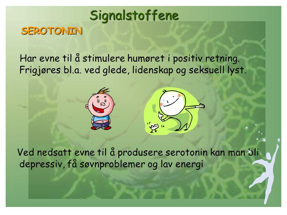 Signalstoffene Signalstoffene SEROTONIN SEROTONIN Har evne til å stimulere humøret i positiv retning.