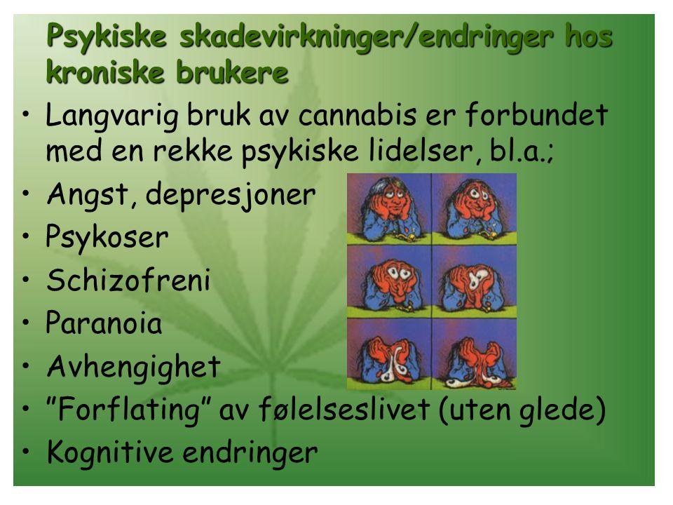 Psykiske skadevirkninger/endringer hos kroniske brukere Langvarig bruk av cannabis er forbundet med en rekke psykiske lidelser, bl.a.; Angst, depresjoner Psykoser Schizofreni Paranoia Avhengighet Forflating av følelseslivet (uten glede) Kognitive endringer