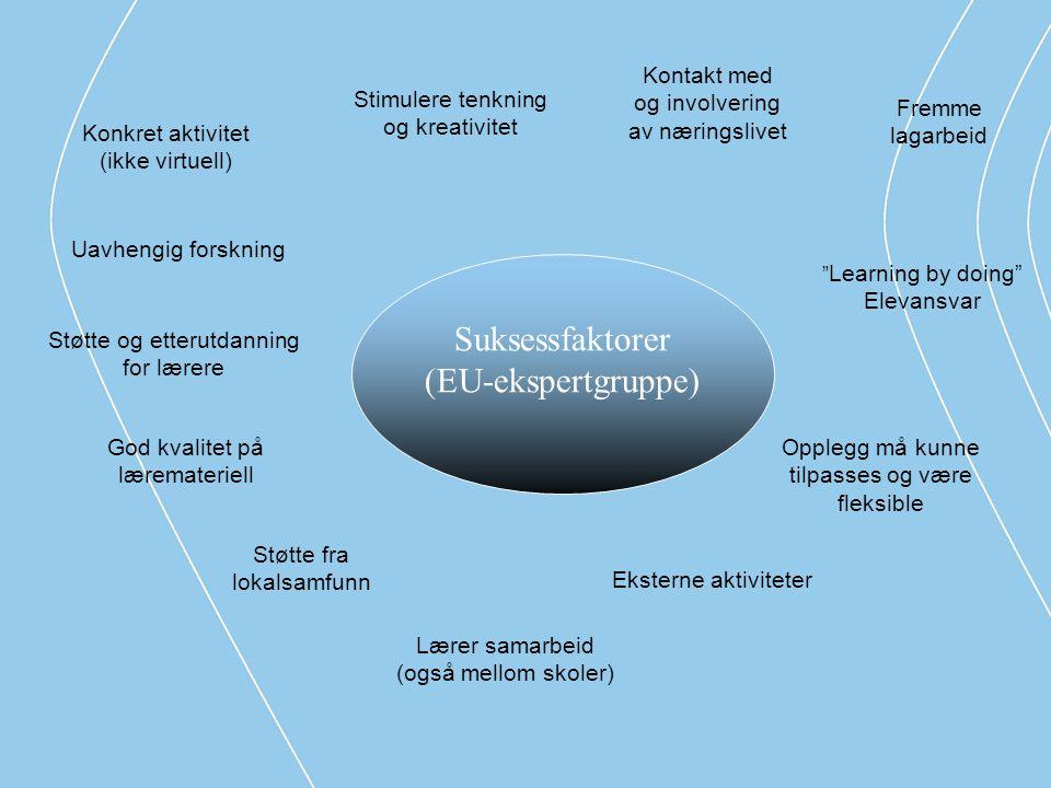 """Konkret aktivitet (ikke virtuell) """" Learning by doing"""" Elevansvar Opplegg må kunne tilpasses og være fleksible Fremme lagarbeid Kontakt med og involve"""
