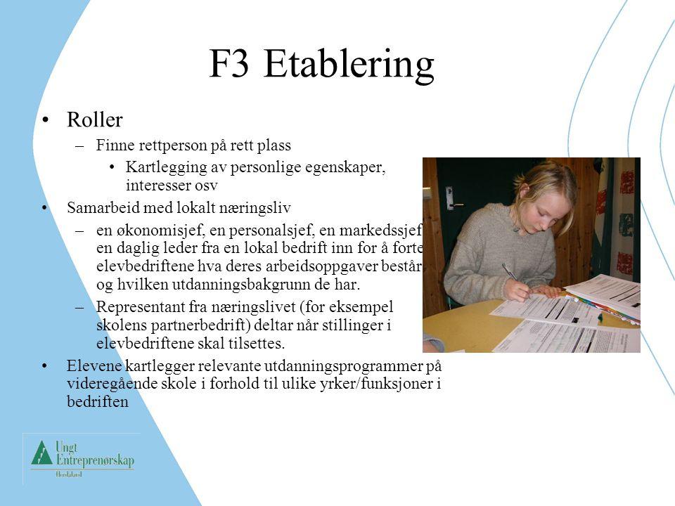 F3 Etablering Roller –Finne rettperson på rett plass Kartlegging av personlige egenskaper, interesser osv Samarbeid med lokalt næringsliv –en økonomis