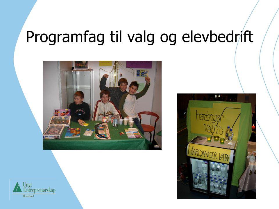 Entreprenørskap i utdanningen er forankret i: Leggja til rette for entreprenørskap på alle nivå i utdanninga, og utvikla ein kultur for entreprenørskap Alle dei vidaregåande skulane skal gi tilbod om opplæring i entreprenørskap Foto: Bjarte Brask Eriksen.