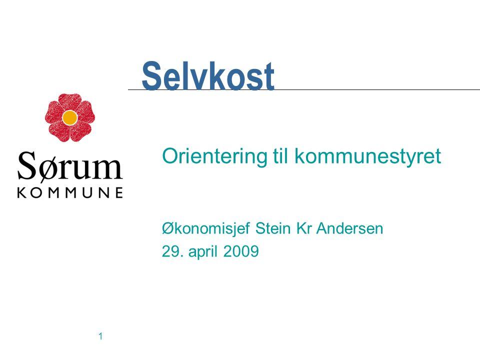 1 Selvkost Orientering til kommunestyret Økonomisjef Stein Kr Andersen 29. april 2009