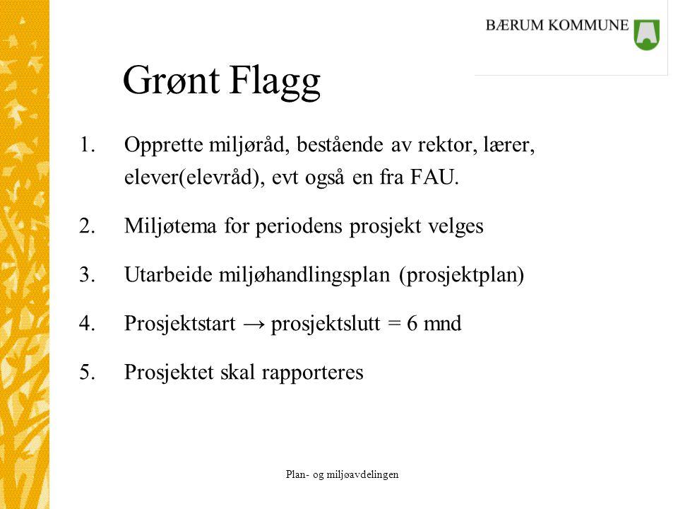 Plan- og miljøavdelingen Grønt Flagg 1.Opprette miljøråd, bestående av rektor, lærer, elever(elevråd), evt også en fra FAU. 2.Miljøtema for periodens