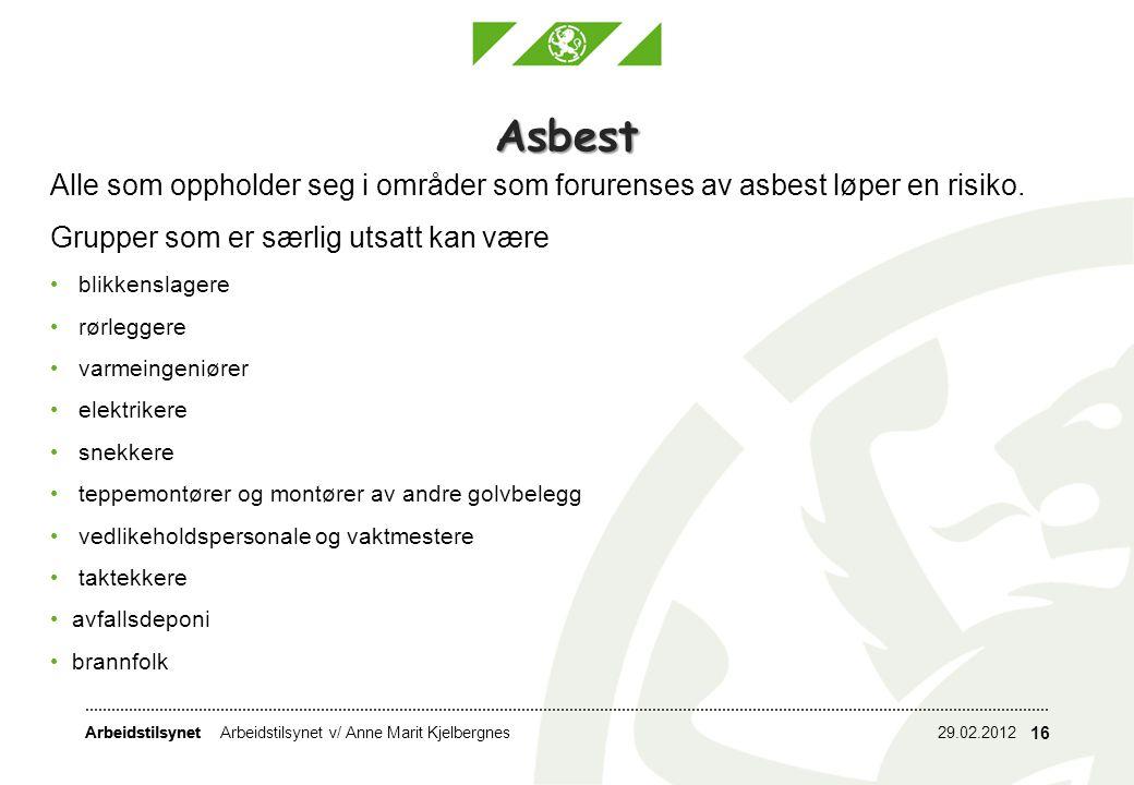 Arbeidstilsynet 29.02.2012Arbeidstilsynet v/ Anne Marit Kjelbergnes 16 Asbest Alle som oppholder seg i områder som forurenses av asbest løper en risik