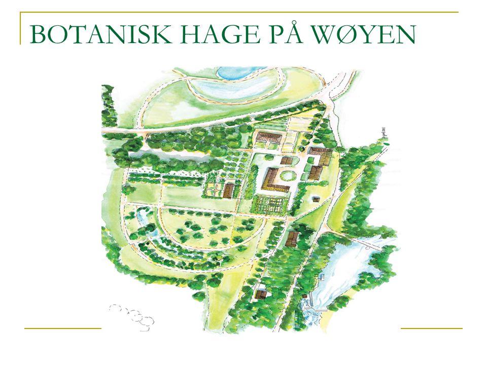 BOTANISK HAGE PÅ WØYEN
