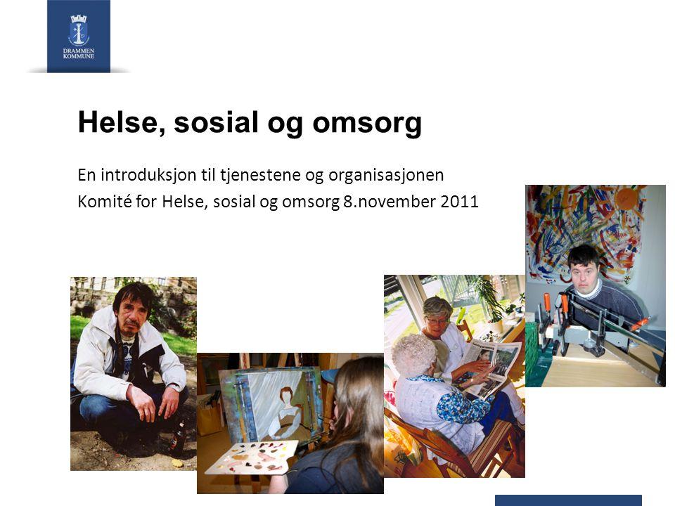 Helse, sosial og omsorg En introduksjon til tjenestene og organisasjonen Komité for Helse, sosial og omsorg 8.november 2011
