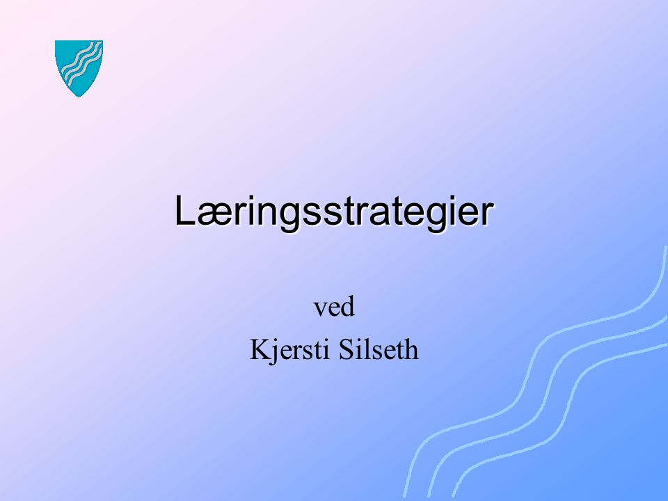 Læringsstrategier ved Kjersti Silseth