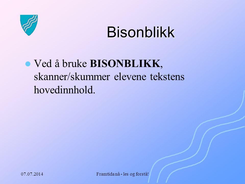 07.07.2014Framtida nå - les og forstå! Bisonblikk Ved å bruke BISONBLIKK, skanner/skummer elevene tekstens hovedinnhold.