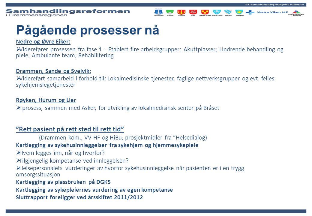 Pågående prosesser nå Nedre og Øvre Eiker:  Viderefører prosessen fra fase 1. - Etablert fire arbeidsgrupper: Akuttplasser; Lindrende behandling og p